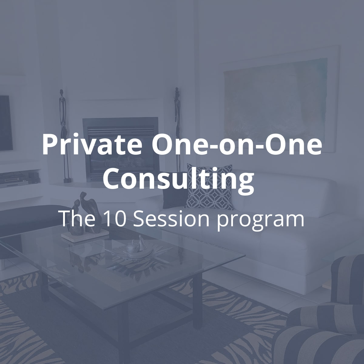 Private One-on-One Consulting